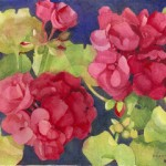 Geraniums Watercolor Painting